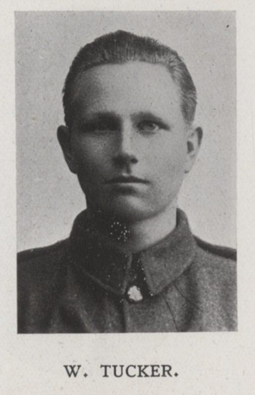 Tucker, W Profile Picture